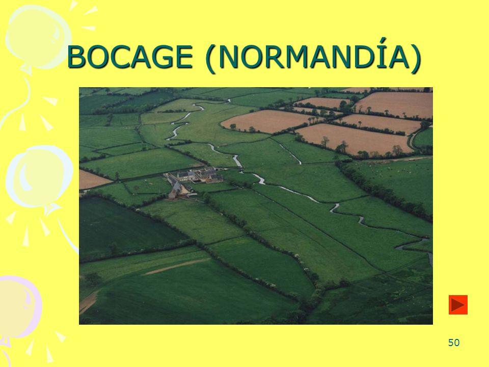 BOCAGE (NORMANDÍA)