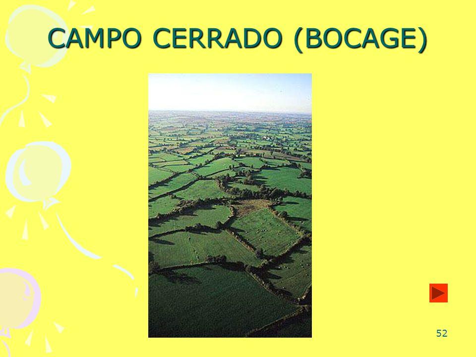 CAMPO CERRADO (BOCAGE)