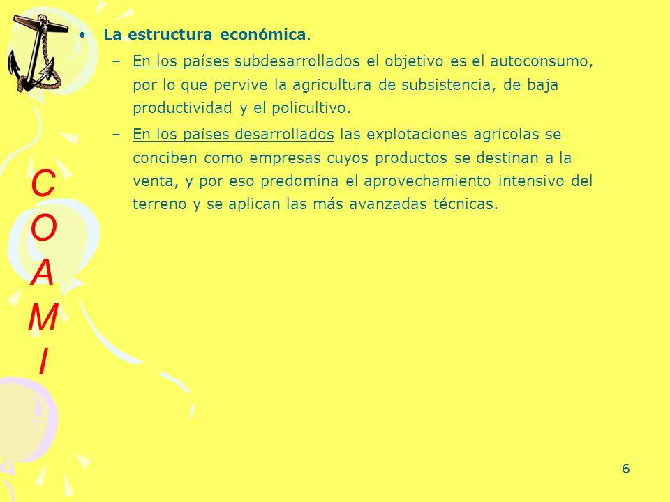 C O A M I La estructura económica.
