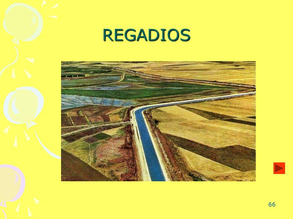 REGADIOS