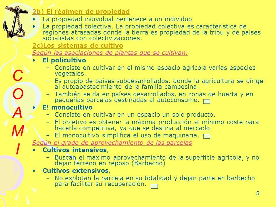 C O A M I 2b) El régimen de propiedad