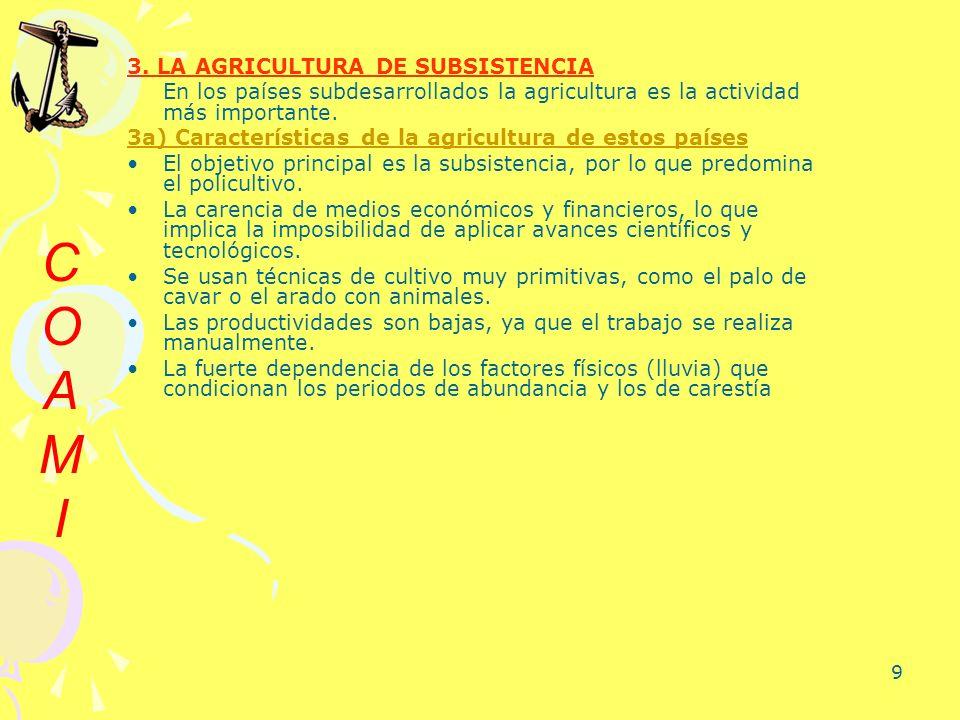 C O A M I 3. LA AGRICULTURA DE SUBSISTENCIA