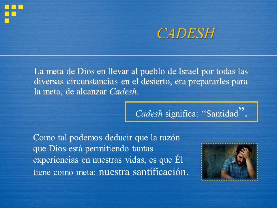 Cadesh significa: Santidad .