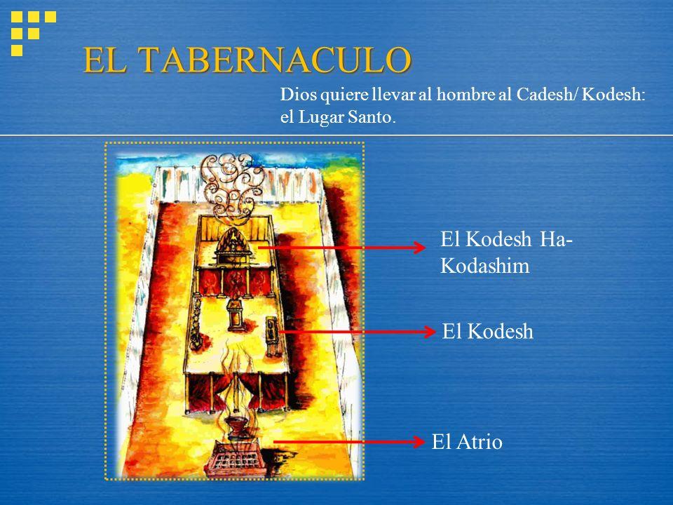 EL TABERNACULO El Kodesh Ha-Kodashim El Kodesh El Atrio