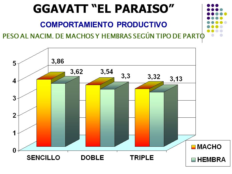 GGAVATT EL PARAISO COMPORTAMIENTO PRODUCTIVO