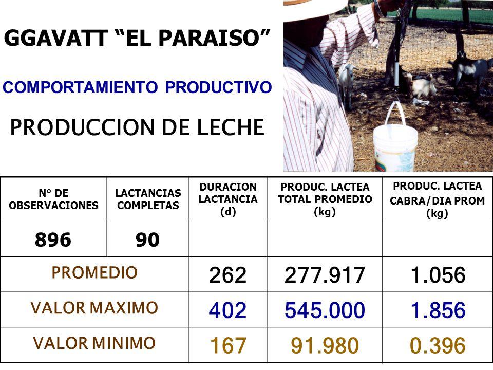 GGAVATT EL PARAISO PRODUCCION DE LECHE 262 277.917 1.056 402 545.000