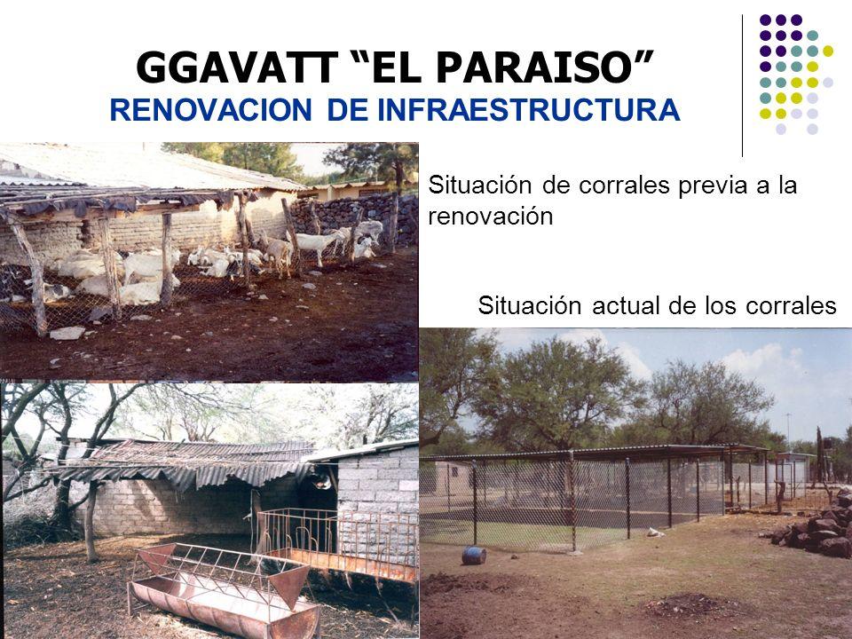 GGAVATT EL PARAISO RENOVACION DE INFRAESTRUCTURA