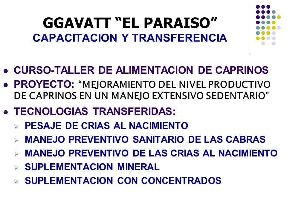 GGAVATT EL PARAISO CAPACITACION Y TRANSFERENCIA
