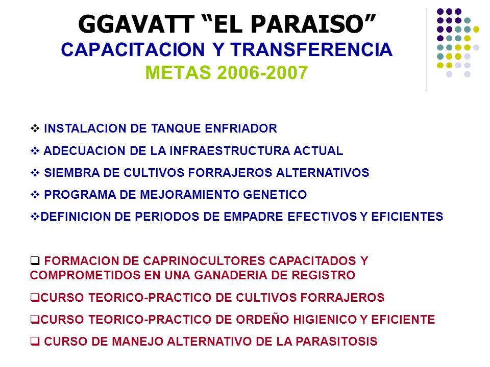 GGAVATT EL PARAISO CAPACITACION Y TRANSFERENCIA METAS 2006-2007