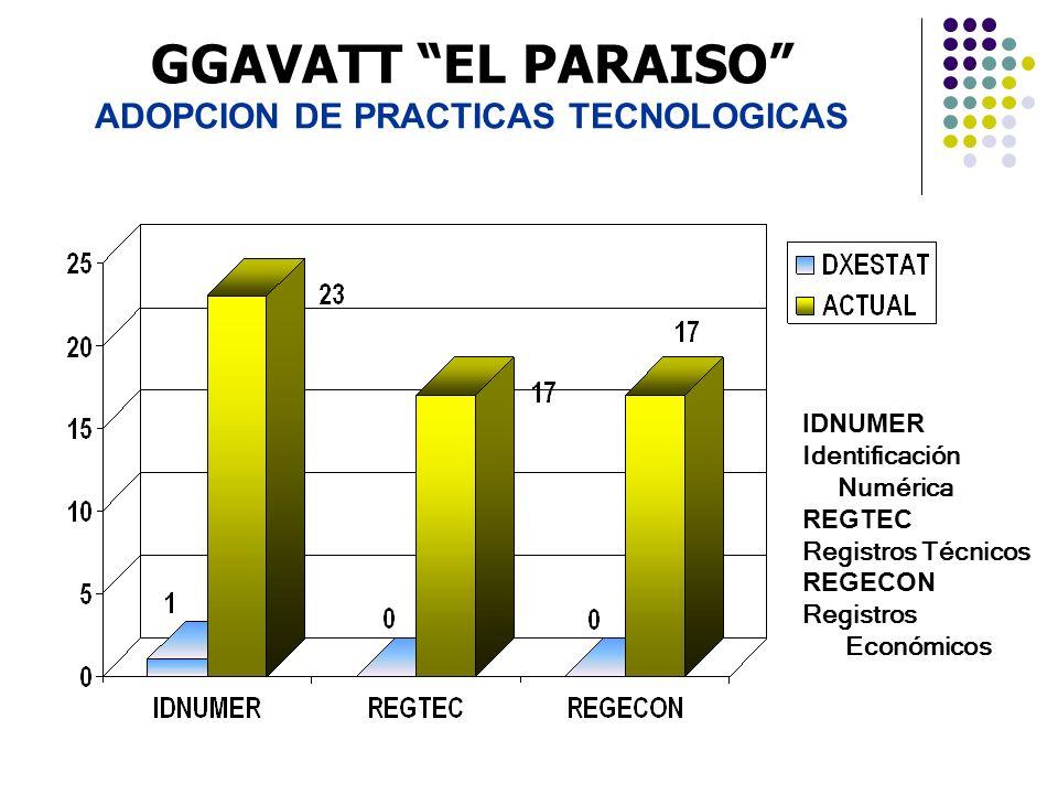 GGAVATT EL PARAISO ADOPCION DE PRACTICAS TECNOLOGICAS