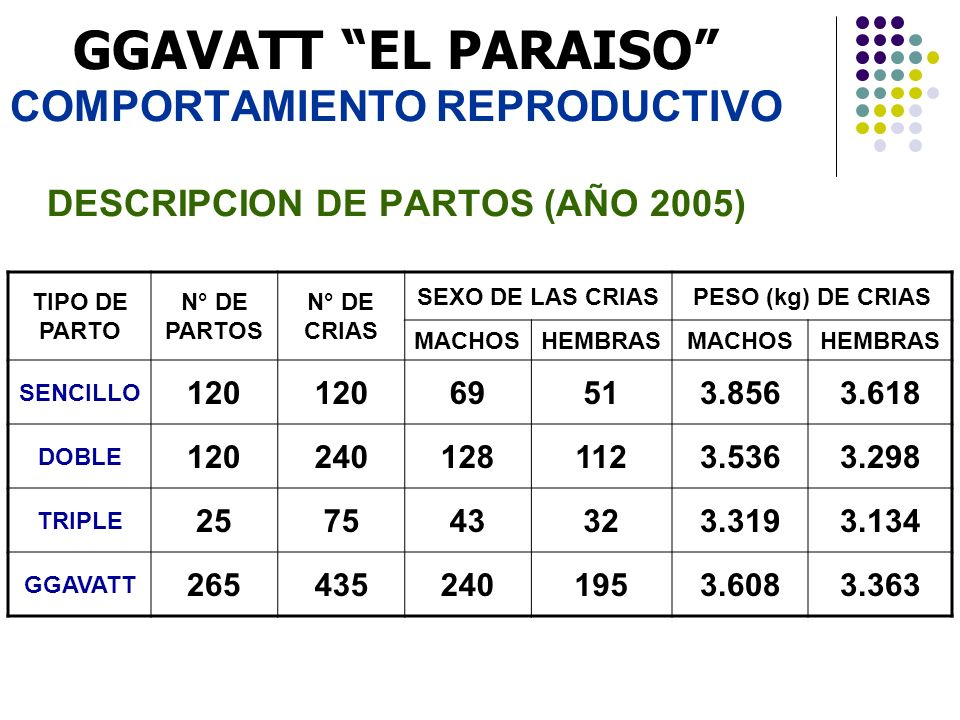 GGAVATT EL PARAISO COMPORTAMIENTO REPRODUCTIVO DESCRIPCION DE PARTOS (AÑO 2005)