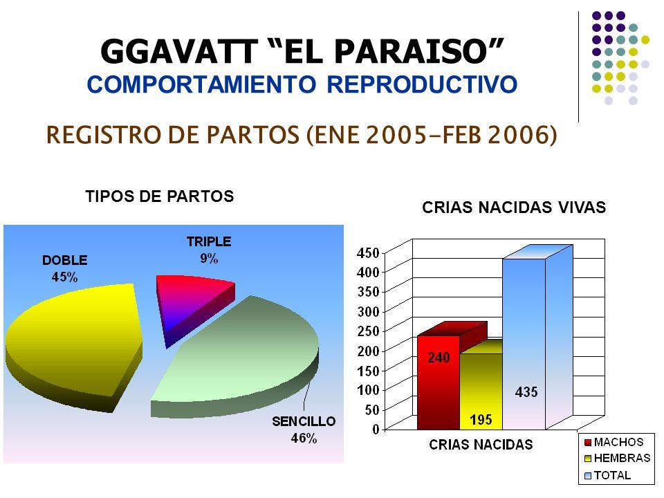 GGAVATT EL PARAISO COMPORTAMIENTO REPRODUCTIVO REGISTRO DE PARTOS (ENE 2005-FEB 2006)