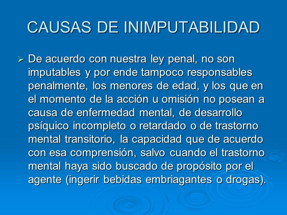 CAUSAS DE INIMPUTABILIDAD