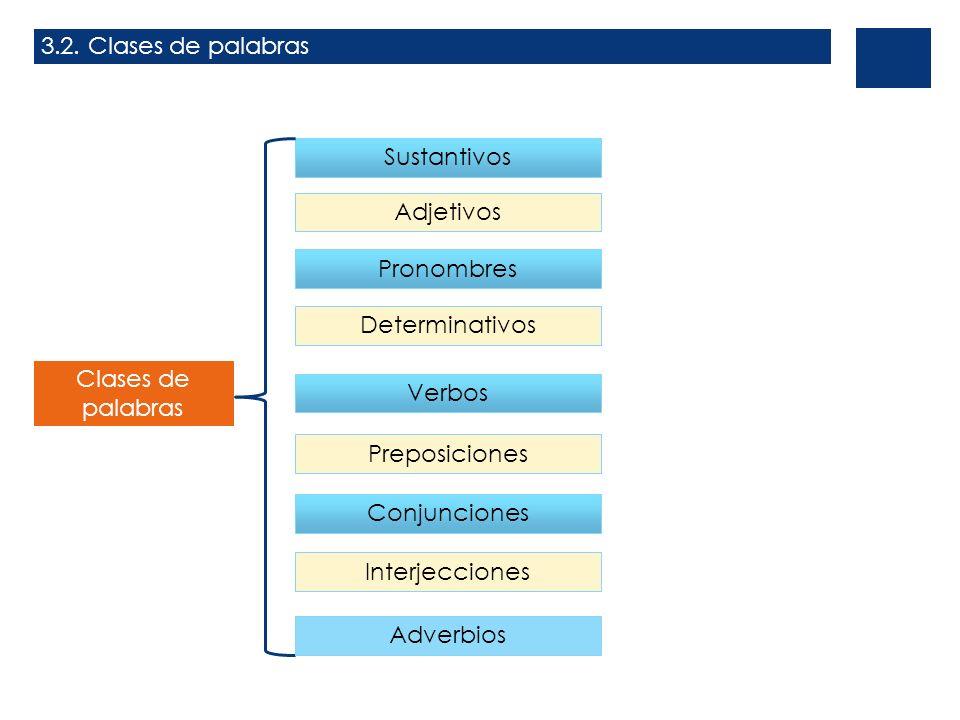 3.2. Clases de palabrasSustantivos. Adjetivos. Pronombres. Determinativos. Clases de palabras. Verbos.