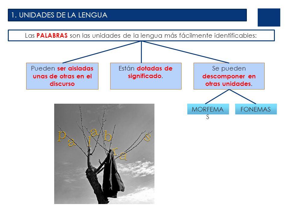 1. UNIDADES DE LA LENGUA Las PALABRAS son las unidades de la lengua más fácilmente identificables: Pueden ser aisladas unas de otras en el discurso.