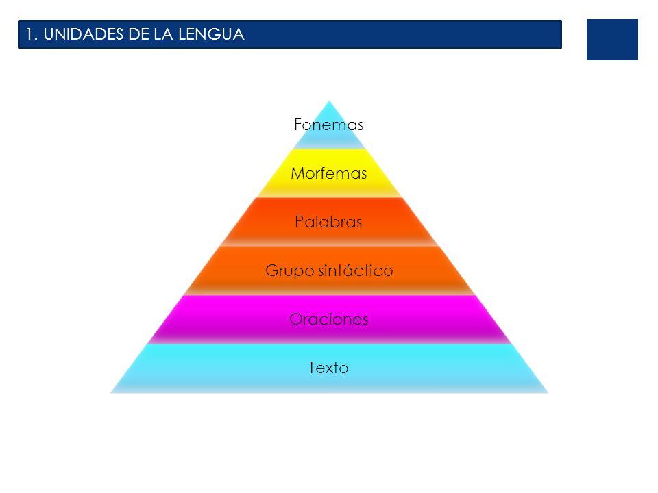 1. UNIDADES DE LA LENGUA Fonemas Morfemas Palabras Grupo sintáctico