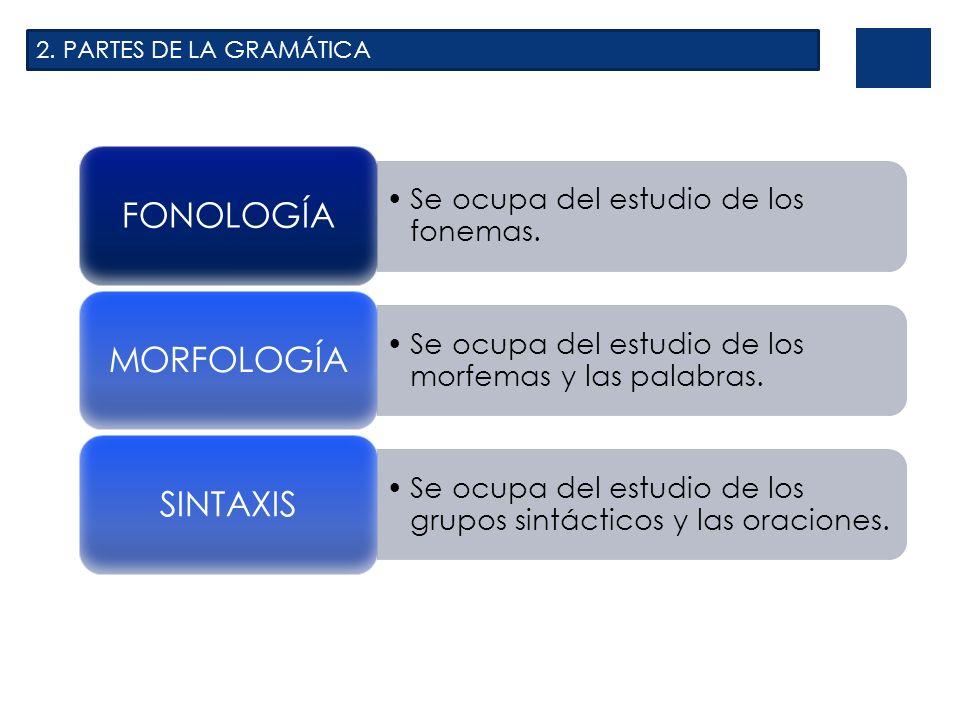 2. PARTES DE LA GRAMÁTICA FONOLOGÍA