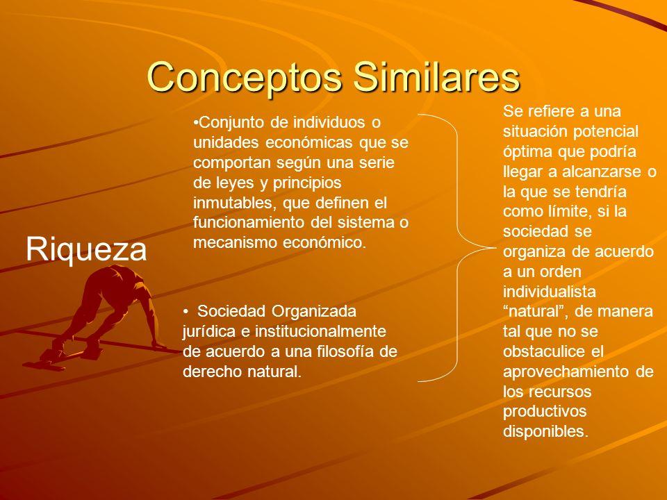 Conceptos Similares Riqueza