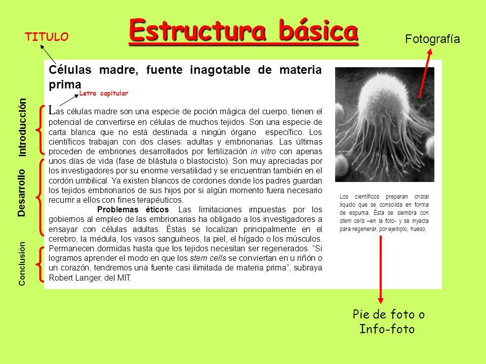 Estructura básica Fotografía