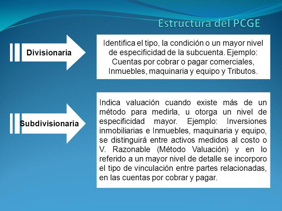 Estructura del PCGE Divisionaria.