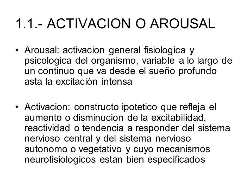 1.1.- ACTIVACION O AROUSAL