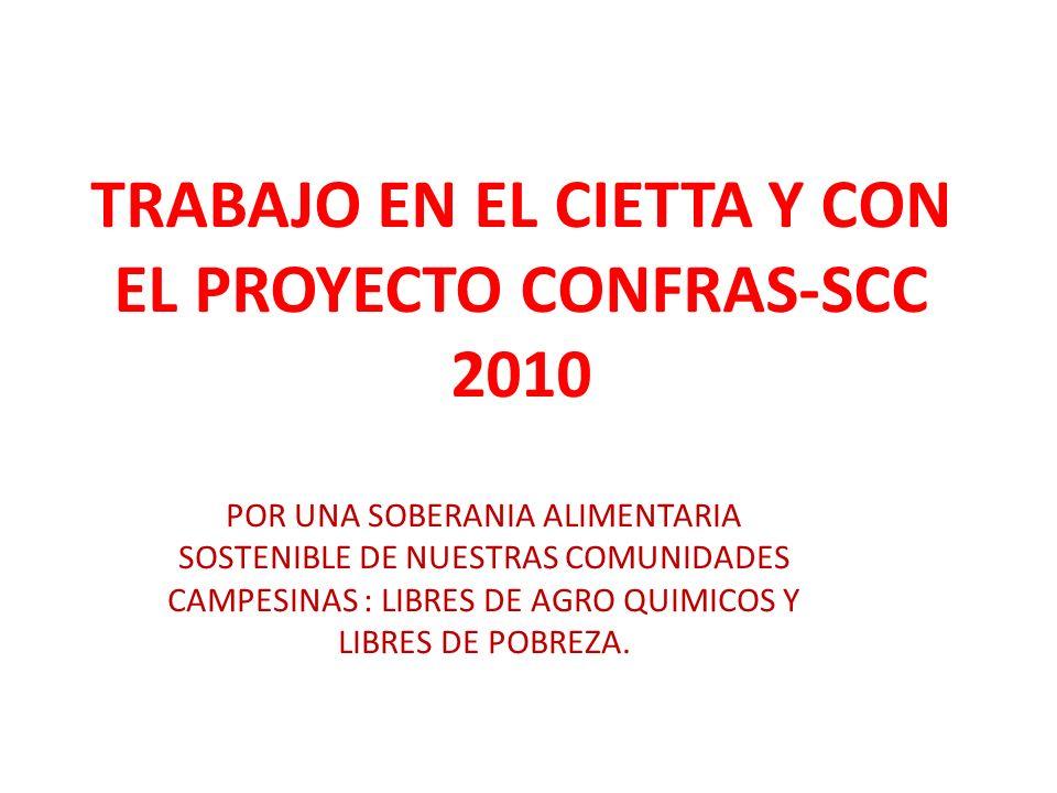 TRABAJO EN EL CIETTA Y CON EL PROYECTO CONFRAS-SCC 2010