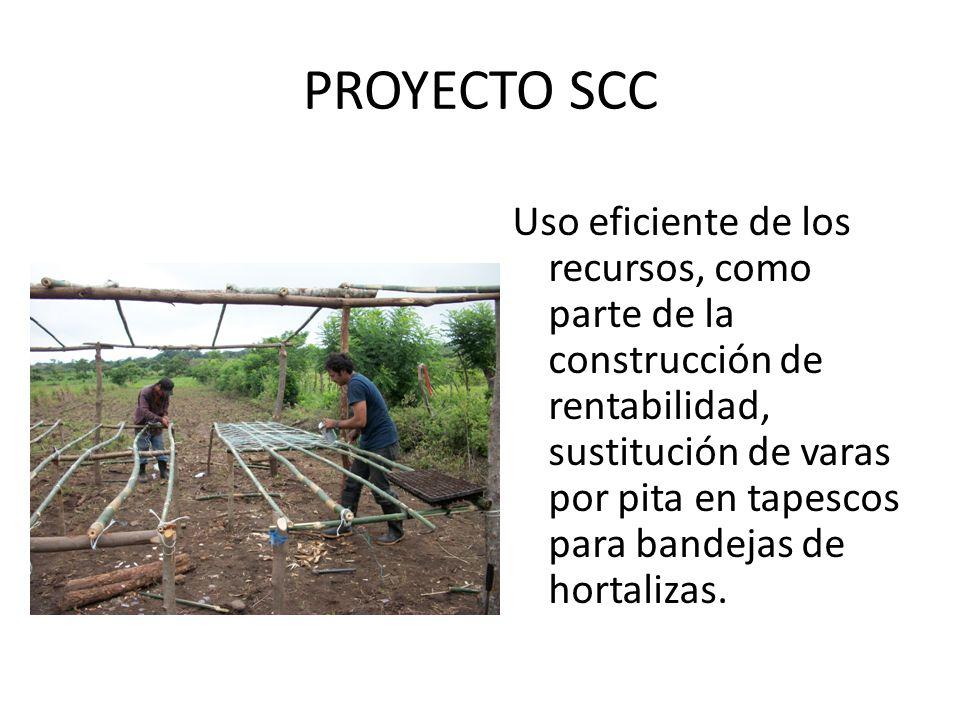 PROYECTO SCC