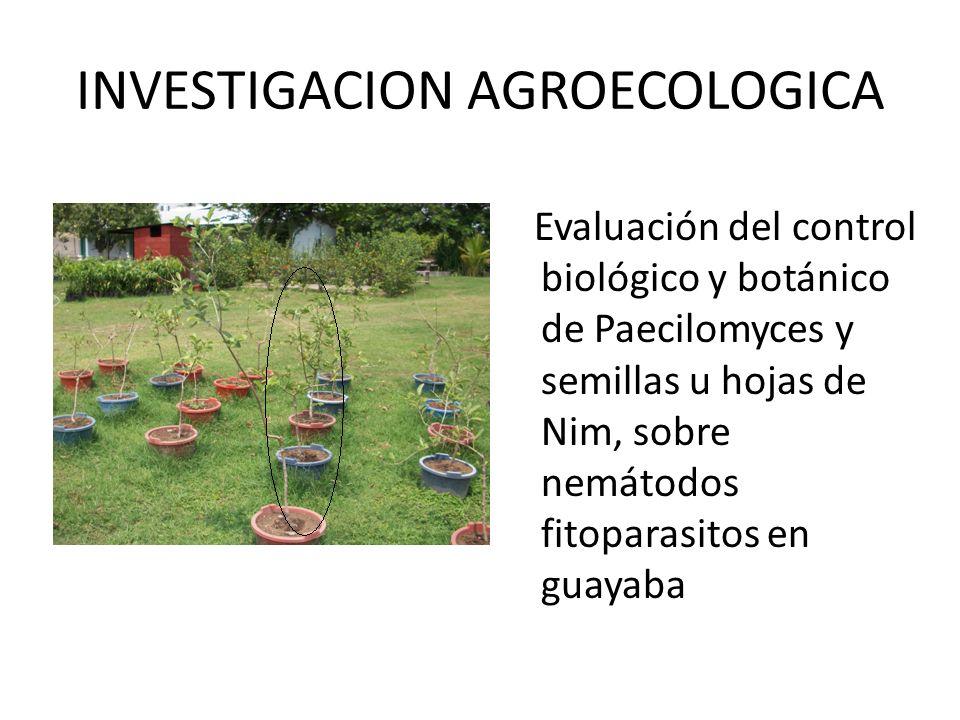 INVESTIGACION AGROECOLOGICA