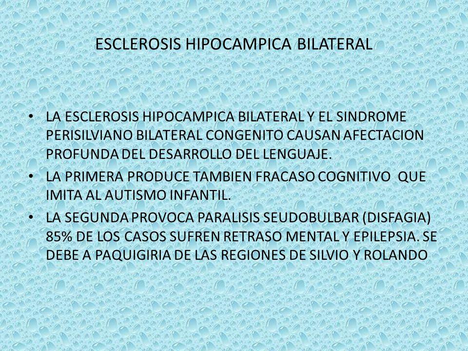 ESCLEROSIS HIPOCAMPICA BILATERAL