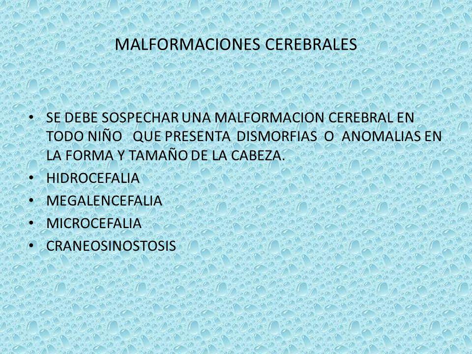 MALFORMACIONES CEREBRALES