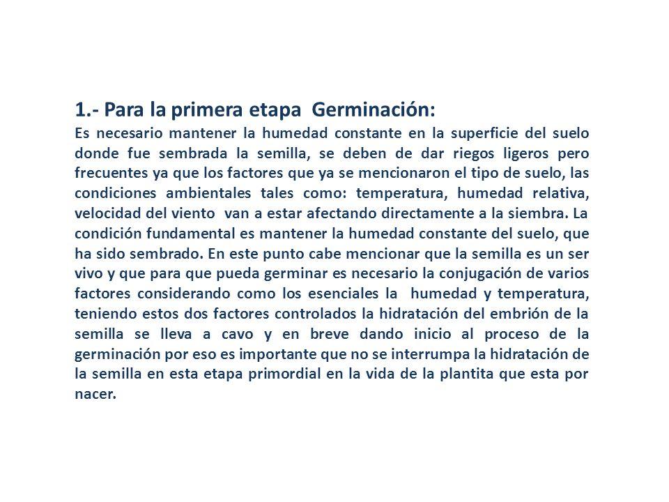 1.- Para la primera etapa Germinación: