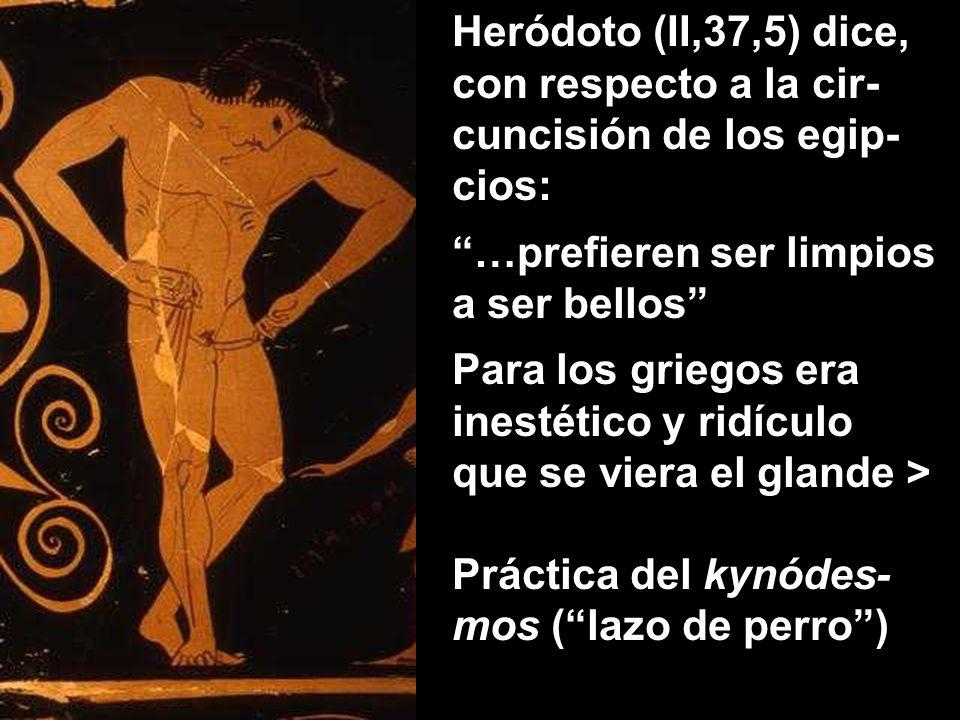 Heródoto (II,37,5) dice, con respecto a la cir-cuncisión de los egip-cios: