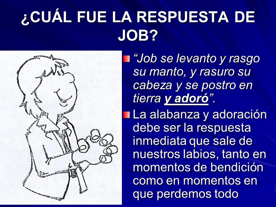 ¿CUÁL FUE LA RESPUESTA DE JOB