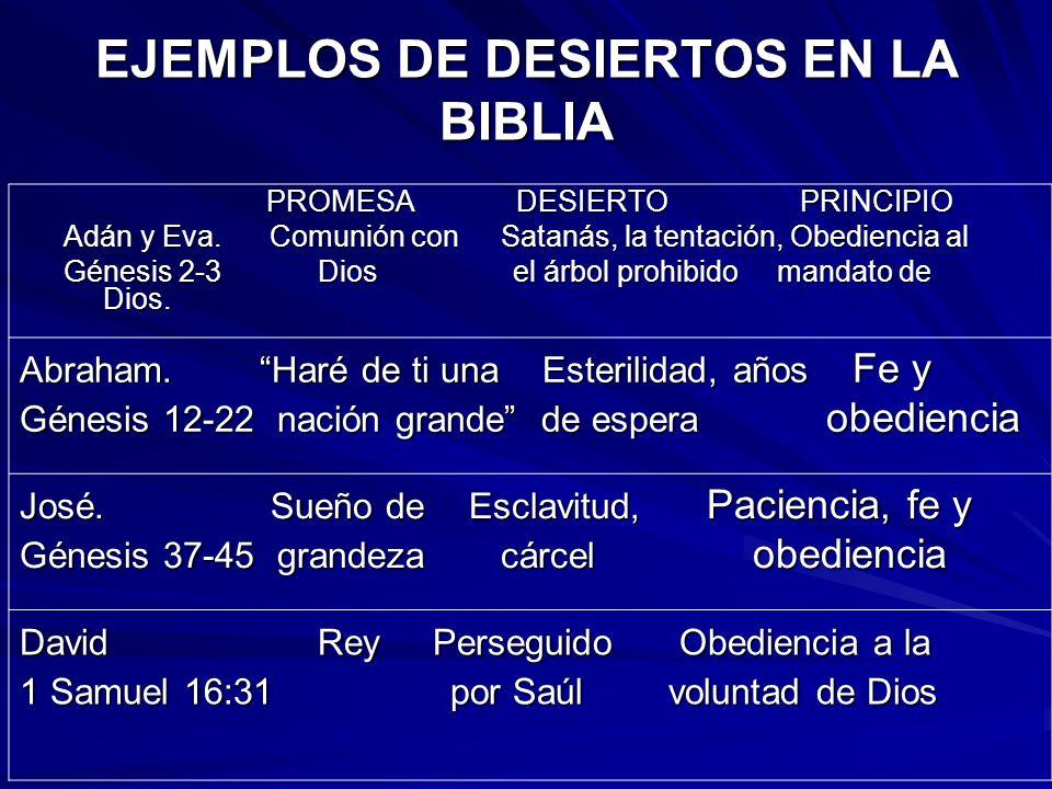 EJEMPLOS DE DESIERTOS EN LA BIBLIA