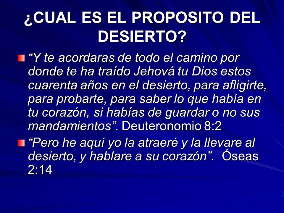 ¿CUAL ES EL PROPOSITO DEL DESIERTO