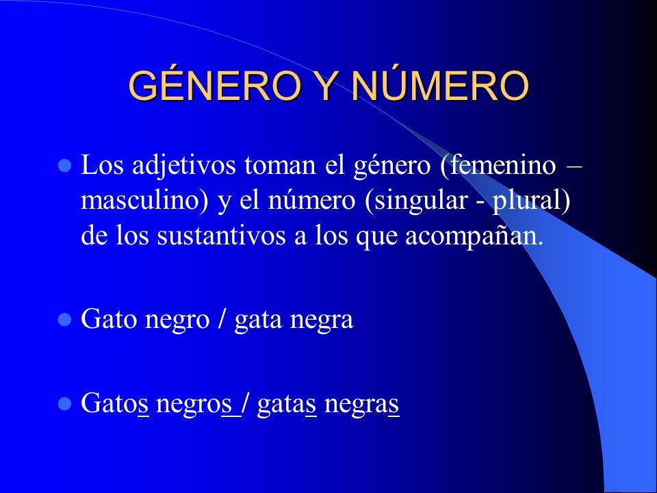 GÉNERO Y NÚMERO Los adjetivos toman el género (femenino –masculino) y el número (singular - plural) de los sustantivos a los que acompañan.