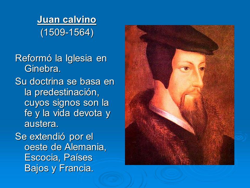 Juan calvino (1509-1564) Reformó la Iglesia en Ginebra.