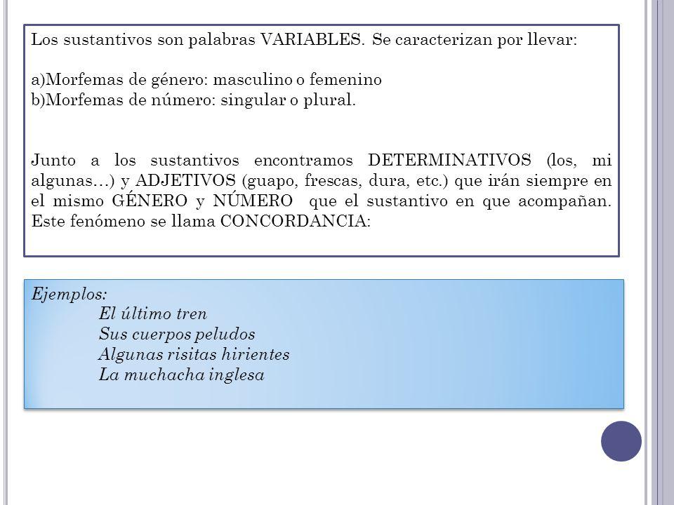Los sustantivos son palabras VARIABLES. Se caracterizan por llevar: