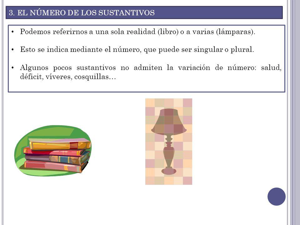 3. EL NÚMERO DE LOS SUSTANTIVOS