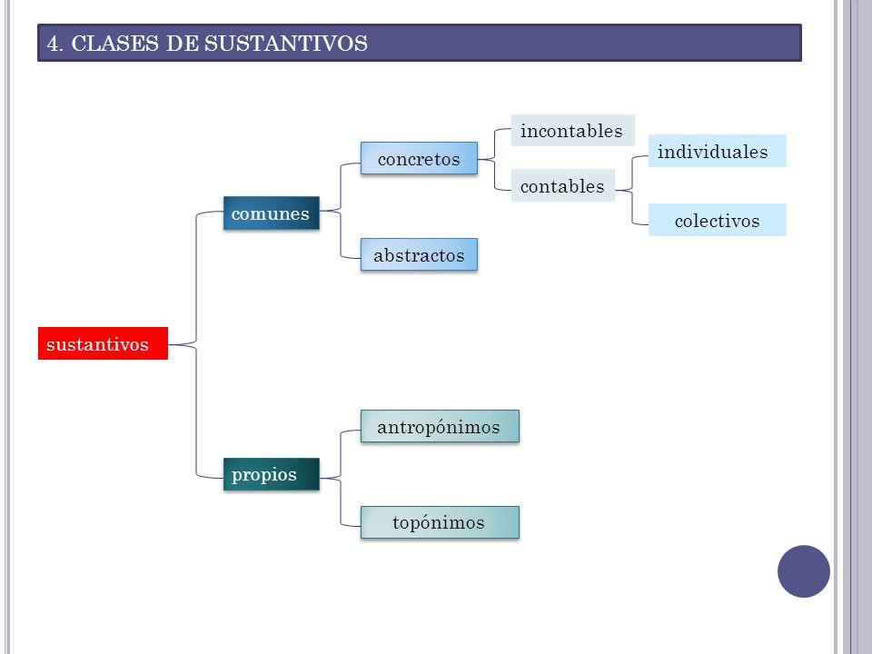 4. CLASES DE SUSTANTIVOS incontables individuales concretos contables