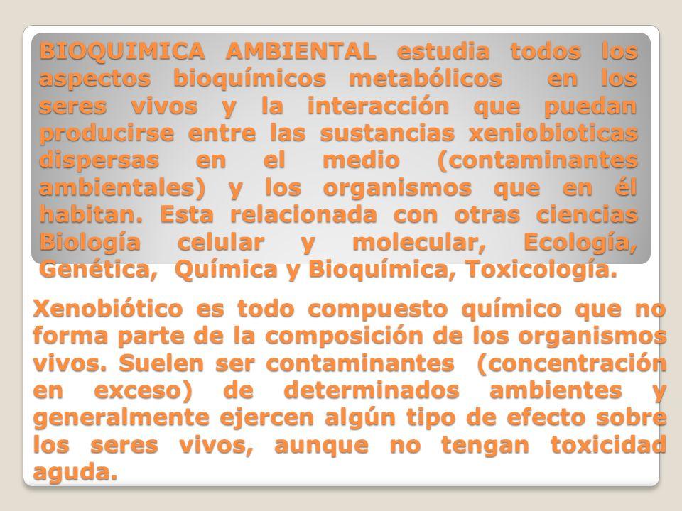 BIOQUIMICA AMBIENTAL estudia todos los aspectos bioquímicos metabólicos en los seres vivos y la interacción que puedan producirse entre las sustancias xeniobioticas dispersas en el medio (contaminantes ambientales) y los organismos que en él habitan. Esta relacionada con otras ciencias Biología celular y molecular, Ecología, Genética, Química y Bioquímica, Toxicología.