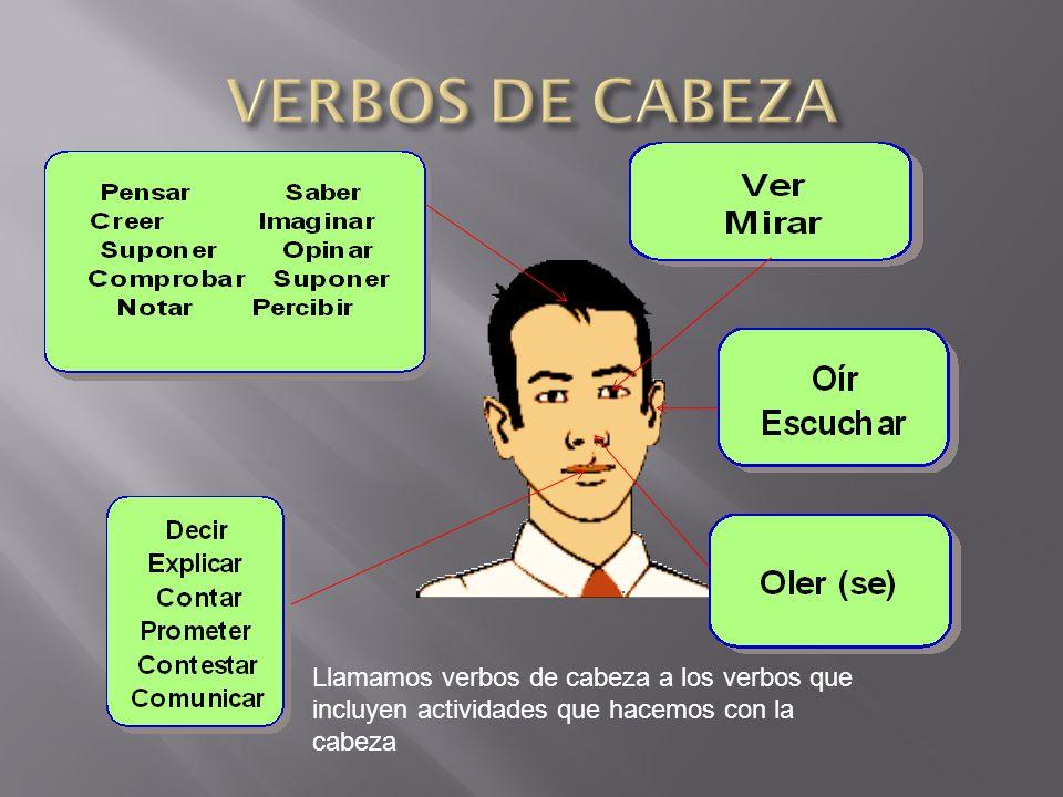 VERBOS DE CABEZA Llamamos verbos de cabeza a los verbos que incluyen actividades que hacemos con la cabeza.