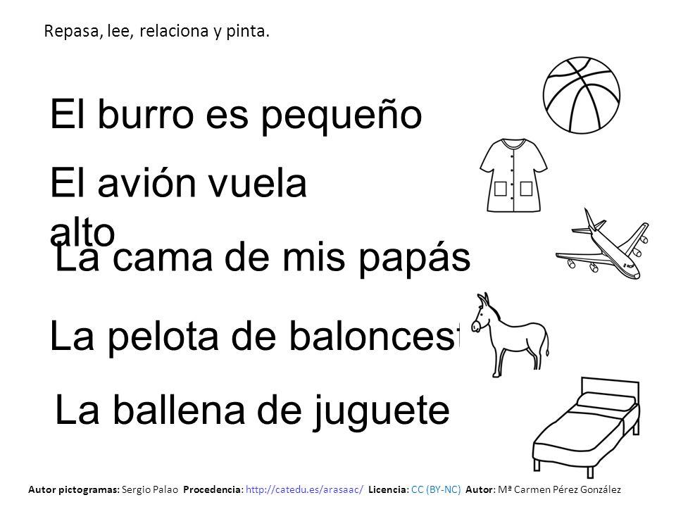 La pelota de baloncesto