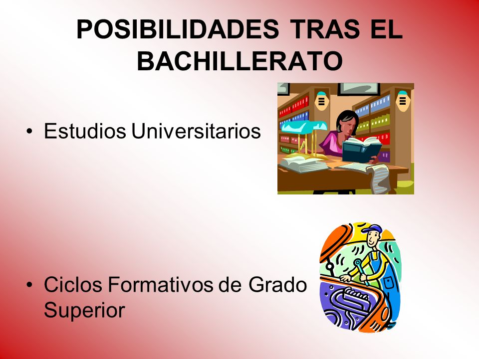 POSIBILIDADES TRAS EL BACHILLERATO