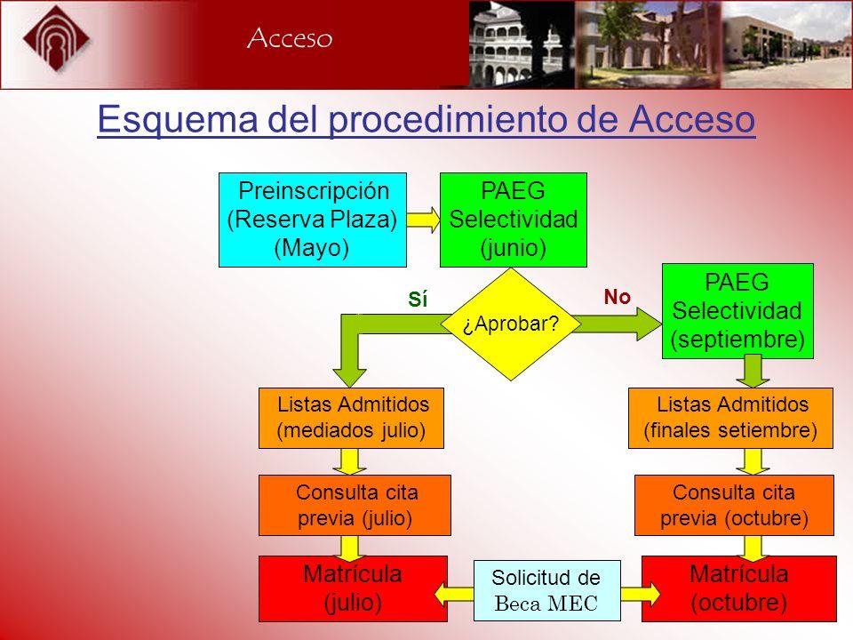 Esquema del procedimiento de Acceso