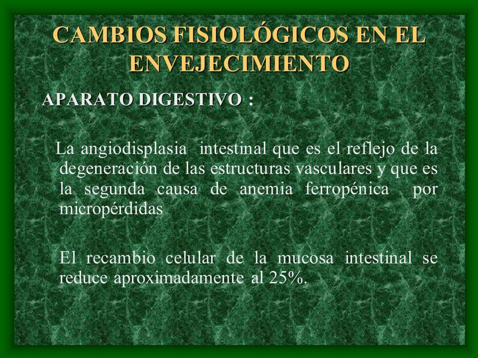 CAMBIOS FISIOLÓGICOS EN EL ENVEJECIMIENTO