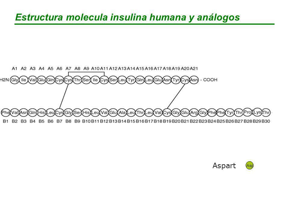 Estructura molecula insulina humana y análogos