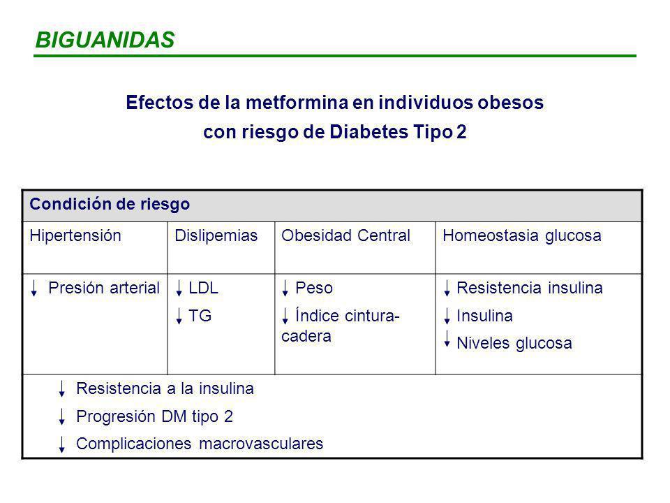 BIGUANIDAS Efectos de la metformina en individuos obesos con riesgo de Diabetes Tipo 2. Condición de riesgo.