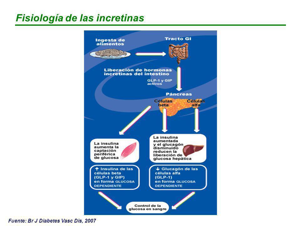 Fisiología de las incretinas