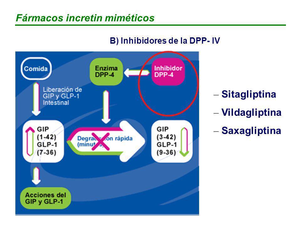 B) Inhibidores de la DPP- IV